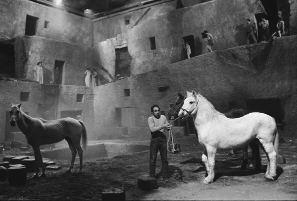 Readying the Horses for the Next TakeFellini's SatyriconRome Italy 1969