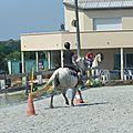 Jeux équestres manchots 2013 (278)