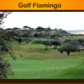Golf in Monastir,booking green fee flamingo monastir tunisia,golf training monastir