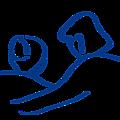 Société de Saint Vincent de Paul Conseil Départemental de l'Eure