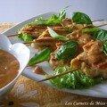 Parfums d'asie, troisième partie - brochettes de poulet grillées style thaï et sauce satay, sans gluten et sans lactose