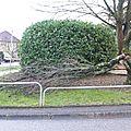 Passage de la tempête Joachim en Meuse