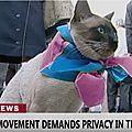 Breaking news: unexpected demonstrators - b1