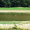 Lac du Broussau 02081611