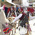 PAUCARTAMBO - Le lama, l'animal inca par excellence