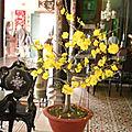 Viêt-Nam Fête du Têt (3/12). La préparation de la fête du Têt.
