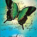L'effet papillon 2 : archimède de lily haime
