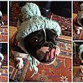 Le <b>bonnet</b> de Goyave