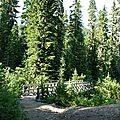 Park Butte Mount Baker Trail 5