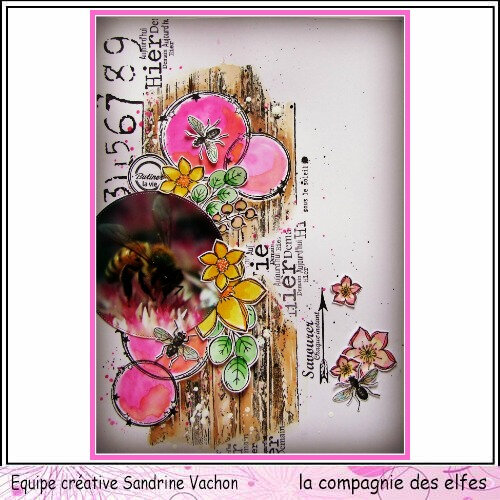 Page Sandrine VACHON dt LCDE avril (1)