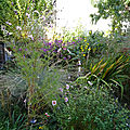 Le Blog du Jardin Partagé LEROY SÈME