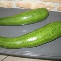 COURGETTE 8