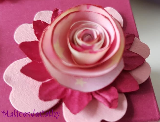 rose spiralée