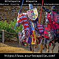 Spectacle équestre médiévales du château de talmont (joutes, combats, dressages, voltiges..)