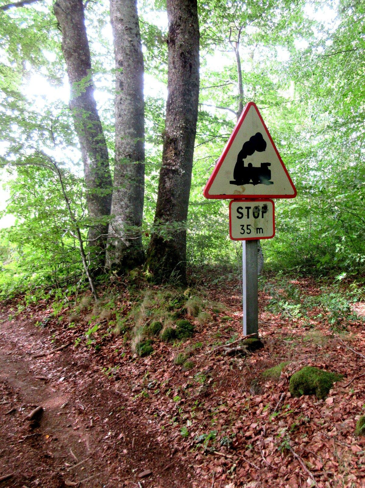 panneau stop en forêt