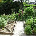 Créer un premier jardin d'aromatiques.