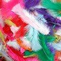 poche de plumes multicolores