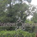 28-Sortie au zoo.
