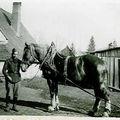 1943 : acpgkrgef3945 Groupe de prisonniers