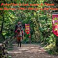 Richard Cœur de Lion, seigneur de Talmont; des Lois Maritimes (Rôles d'Oléron) au droit d'amirauté