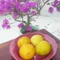 Creme au citron
