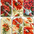 Planches coquelicots