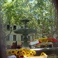 Eau pour tous, la fontaine de la place du Marché-aux-Herbes d'Uzès