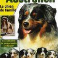 Le <b>Berger</b> <b>Australien</b>, le chien de famille