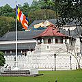 Voyage # 4 Sri Lanka