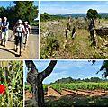 La londe et le dolmen de gaoutabry 24/05/17