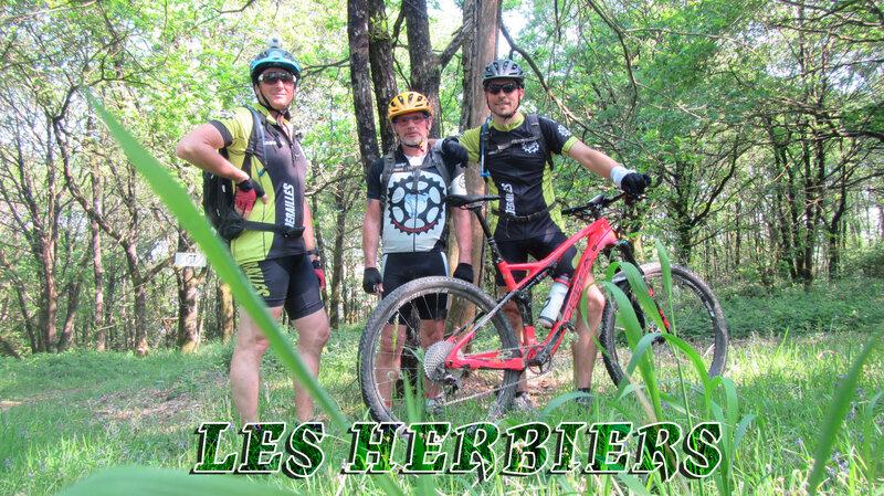2018-05-08-LES-HERBIERS