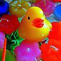 animô mini duck (2)