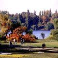 Herastrau sonbahar, in spring, en autumn
