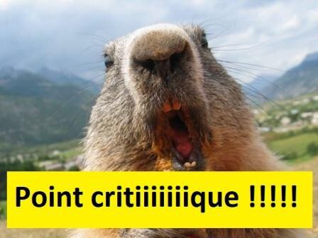 marmotte_en_furie1 - Copie