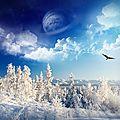 Féerie d'hiver, un conte de Noël