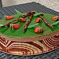 Photo du mois # 5 : Un gâteau arrivé à point !