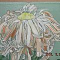 Fleurs, toiles et dessins