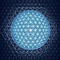 ➡️La fleur de Vie : l'antidote des <b>géométries</b> sacrées