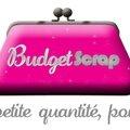 Suivez moi sur le blog de budget scrap !