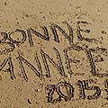 Mes vœux 2015