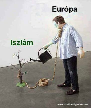 islam europe humour ps ump