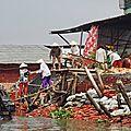 Sur le Mékong - briquetterie