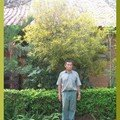 le jardinier devant un autre croton
