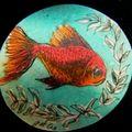 poisson rouge et algues