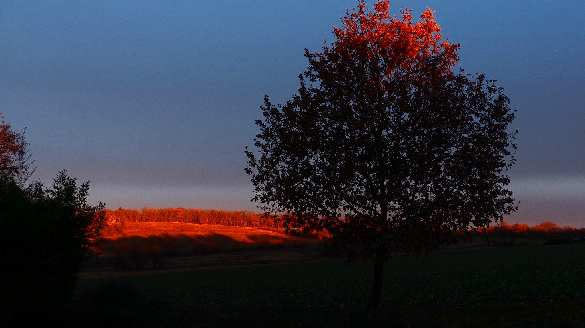 Coucher de soleil dans le Gers