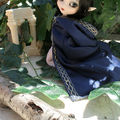 Concours miss pullip mansion - phase 1