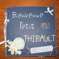 Bienvenue petit Thibault