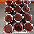 25-coulis mures et framboises - www.passionpotager.canalblog.com