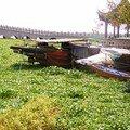 Zhouzhuang cité lacustre (34)