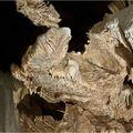les grottes de LACAVE (9)
